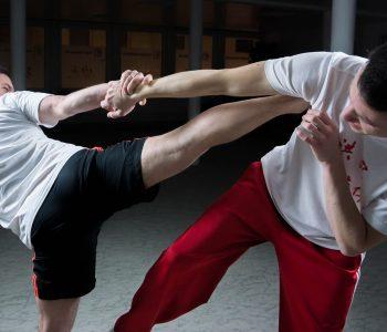 Séance d'arts martiaux en cours