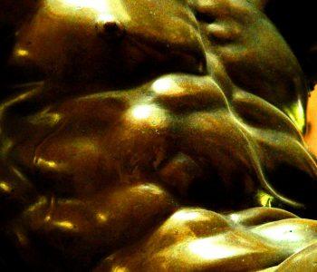 Abdominaux en or