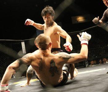 Pratiquer le MMA que dit la loi sur le sujet