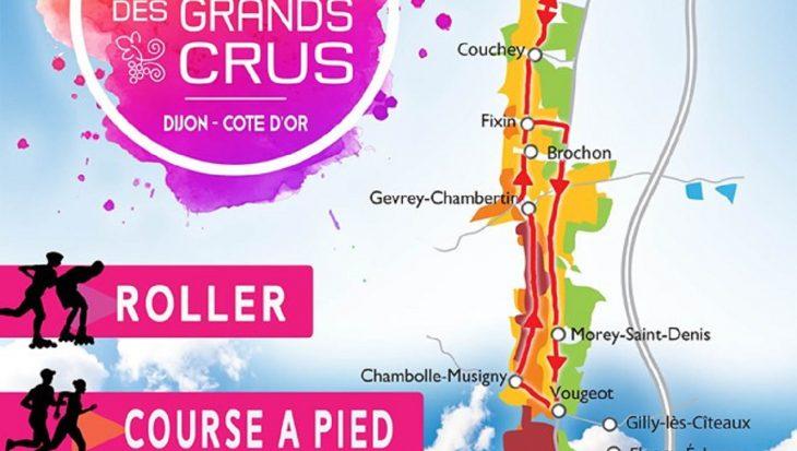 Le marathon de Dijon : sur la route des grands crus