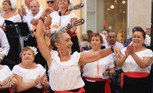 flamenco, la guitare, la musique et la danse