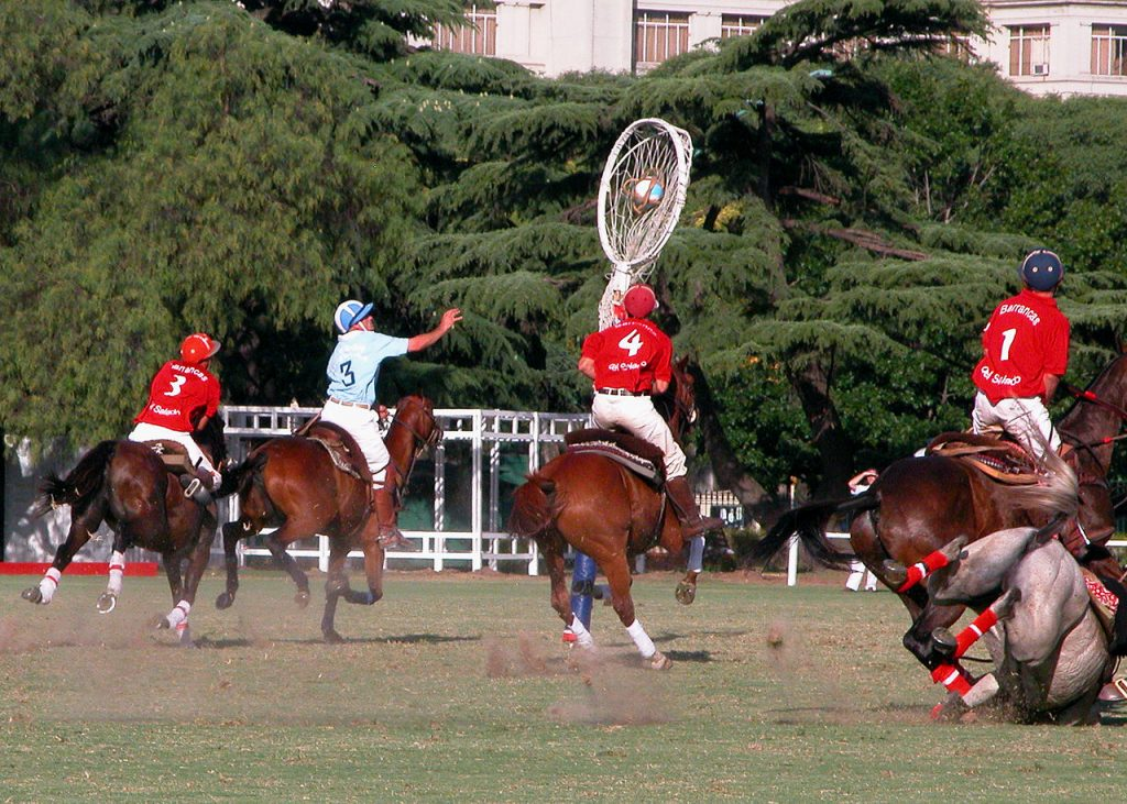 Un match de pato, sport national argentin